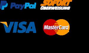 ZAHLUNGSARTEN Paypal Sofortüberweisung Visa Mastercart Klarna